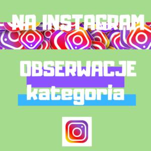 Obserwujący na Instagram